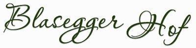 blasegger.com