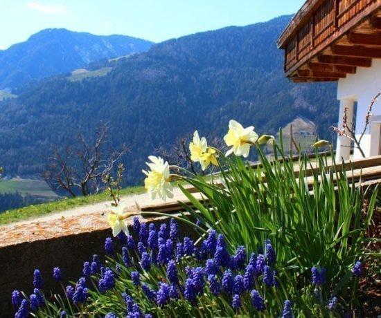 Vacanze in Valle Isarco - Primavera