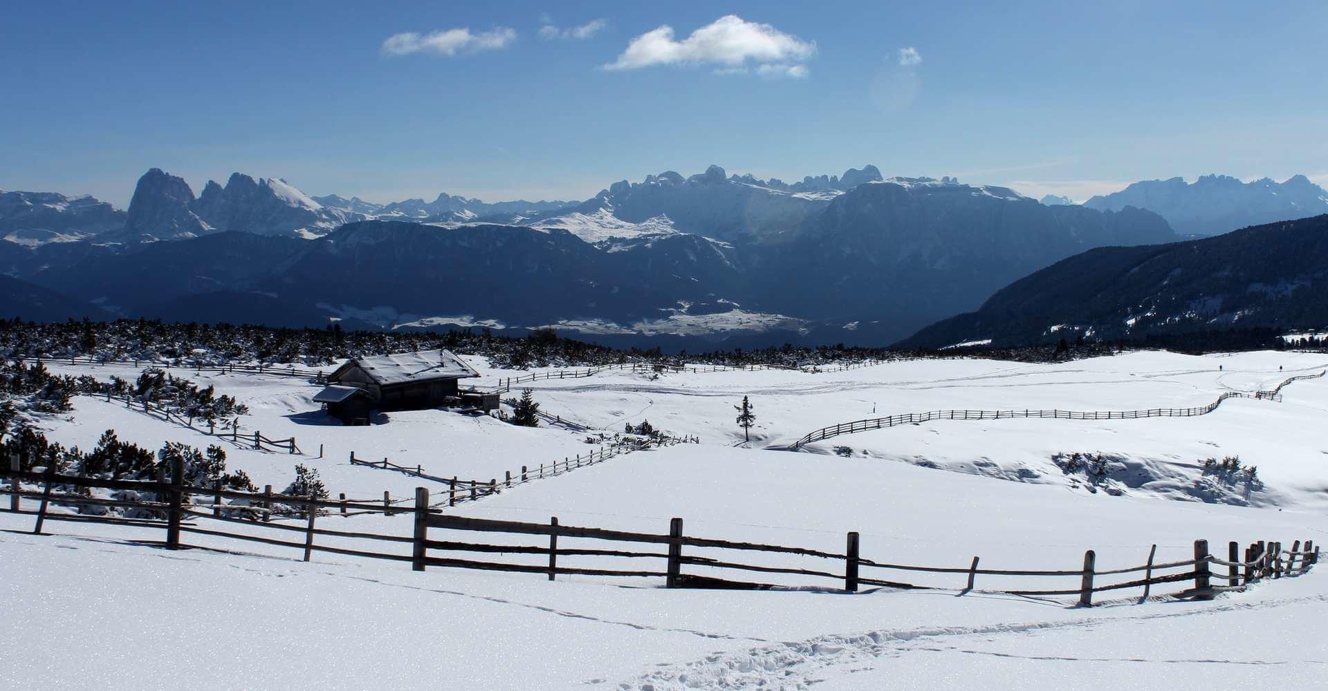 Winterurlaub auf dem Bauernhof